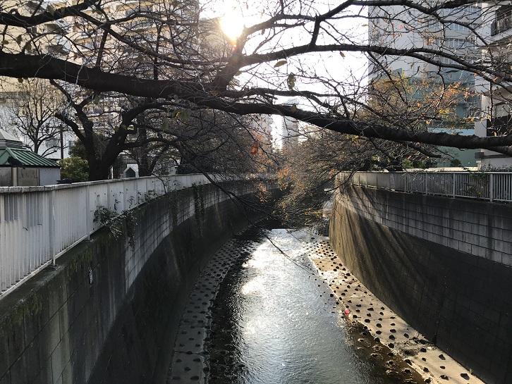 小滝橋周辺3
